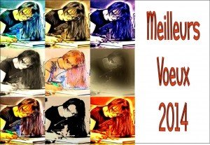 Voeux 2014